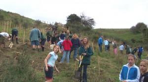 2005-si planting