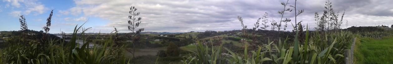 Mangemangeroa Reserve